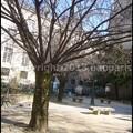 写真: P3450485