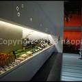 Photos: P3660133