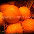 Photos: P3690349