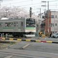 Photos: CIMG4426 桜と電車