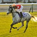 ?Gold Ship(JPN)&H.Uchida[2] #japancup #horseracing