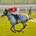 ?Gold Ship(JPN)&H.Uchida[3] #japancup #horseracing