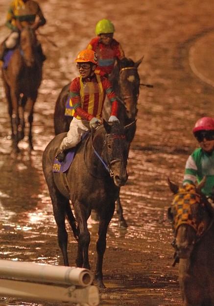 こちらは泥だらけになったテスタマッタ。大井のダービージョッキーにしてこの表情…。