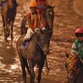 Photos: こちらは泥だらけになったテスタマッタ。大井のダービージョッキーにしてこの表情…。