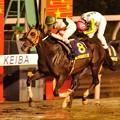 Photos: 第36回帝王賞競走優勝馬 ホッコータルマエ&幸英明