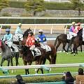 Photos: [3新芝12]新馬戦お馴染みの光景