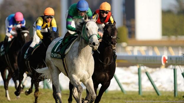 [140217東京11R東京新聞杯]1馬身つけてホエールキャプチャが楽勝。リスポリ「マジカヨ・・・」みたいな表情