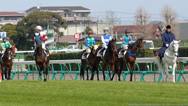 [070225中山5R新馬]はじめての競馬場、お馴染みの風景。みんなここからスタート。
