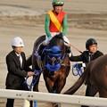 [140312大井11R京浜盃]ファイト(張田京)、お馬さんは相変わらずファイト一発モード