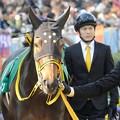 [140316中山11R中山牝馬S]サンシャイン。厩務員さんの視線に愛情を感じます。