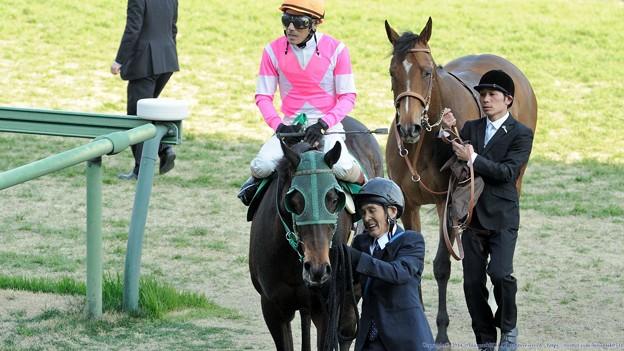 [140316中山11R中山牝馬S]重賞初挑戦でこの結果は立派、厩務員さんも大喜びのケイアイエレガント。後ろのエバーブロッサム「いいなぁ…」