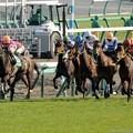[140316中山11R中山牝馬S]外からフーラブライドとキャトルフィーユが追い込んでくる
