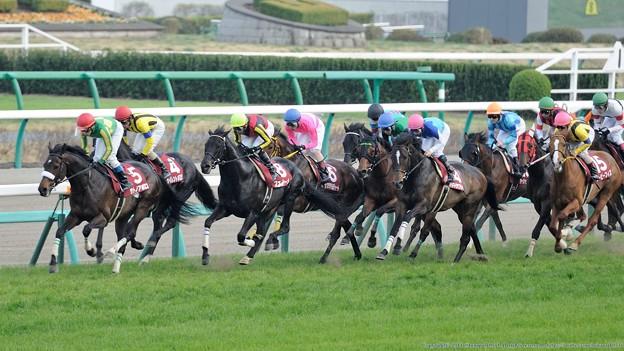 [140329中山11R日経賞]フェノーメノ、アドマイヤフライトは先団に取り付く