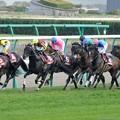 Photos: [140329中山11R日経賞]フェノーメノ、アドマイヤフライトは先団に取り付く