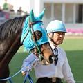 Photos: [140329中山11R日経賞]マイネルジェイドのライトジロリ #ジロリ馬