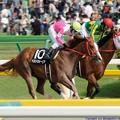 写真: [140504東京10RオアシスS]完勝したベストウォーリア