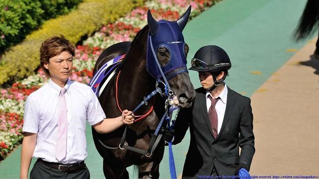 [140511東京11RNHKマイルC]マイネルディアベル「ねえねえ、ちょっとだけベロ出せるの、みてみて?すげえっしょ?」引き馬さん「はい…はいはい…」
