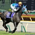 Photos: [140511東京11RNHKマイルC]アドマイヤビジン&四位。四位も気持ちよさそうに走る
