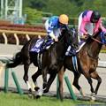 Photos: [140518東京11RVM]第9回ヴィクトリアマイル優勝馬ヴィルシーナ&内田博幸 #keiba