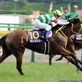 Photos: [140525東京11R優駿牝馬]400m。川田「いっけええええ!」ハープスター落鉄寸前「なんか、ブラブラして気持ち悪い!!」