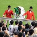 Photos: [140525東京11R優駿牝馬]ヌーヴォレコルト「ほんとすいません」