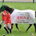 Photos: [140525東京11R優駿牝馬]ヌーヴォレコルト「少しでも祝福してくださる人がいるのならばどこにでも行きますよ私は」