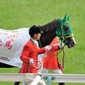 Photos: [140525東京11R優駿牝馬]ヌーヴォレコルト「お父さんが有馬記念勝った時もこんなんだったのかしらね、まあ、受け継いだ血だし、こういうこともあるわね」