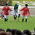 Photos: [140525東京11R優駿牝馬]ヌーヴォレコルト「みんなハープちゃんみたかったんでしょうね~」