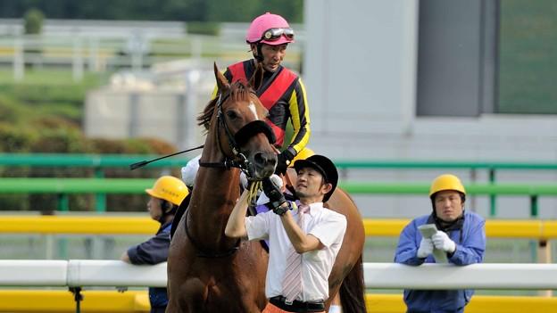 [140525東京11R優駿牝馬]フォーエバーモア「蛯名さんこわい…」