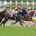 Photos: [140525東京11R優駿牝馬]坂下。ディルガはギリギリ、パシフィックギャルは一杯。ハープスター追撃開始。落鉄はまだしていない