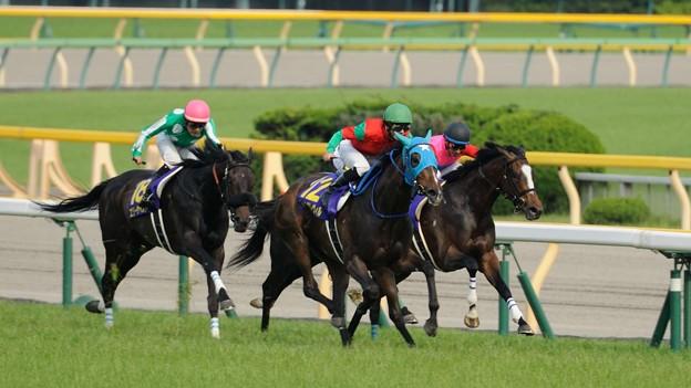 [140525東京11R優駿牝馬]坂下。引っ張ってきたペイシャフェリスとエリーザベストを置き去りにしてまずマイネグレヴィルが抜け出す