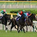 Photos: [140525東京11R優駿牝馬]坂下。引っ張ってきたペイシャフェリスとエリーザベストを置き去りにしてまずマイネグレヴィルが抜け出す