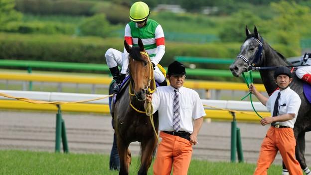 [140525東京11R優駿牝馬]ハープスター「メンコ取ったから余計みんなの視線を受けやすくなっちゃった…」