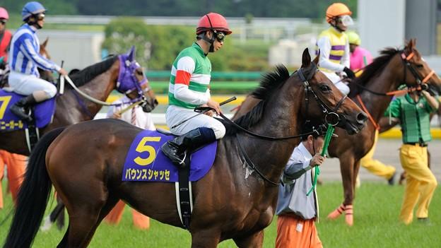 [140525東京11R優駿牝馬]バウンスシャッセ「だいぶ落ち着いてきてるみたいだけど、そうでもないみたい」