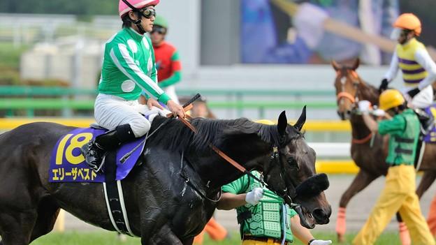[140525東京11R優駿牝馬]エリーザベスト「リラックスしてきたとはいっても、お客さんたちが興奮してるからこっちも乗らされてきたわ」