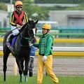 Photos: [140525東京11R優駿牝馬]マジックタイム「なんか私もすこし足がすくんできました…」 #ジロリ馬