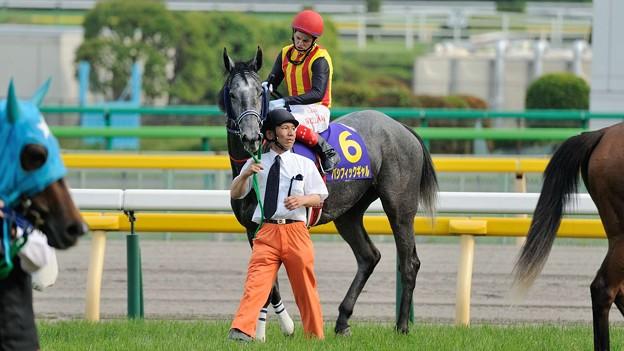 Photos: [140525東京11R優駿牝馬]ウィリアムズ「ギャルサンドウシマシタカ~?」パシフィックギャル「なんかね、諸々心配になってきちゃった」