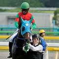 Photos: [140525東京11R優駿牝馬]マイネグレヴィル「なんだか…物騒な感じです」