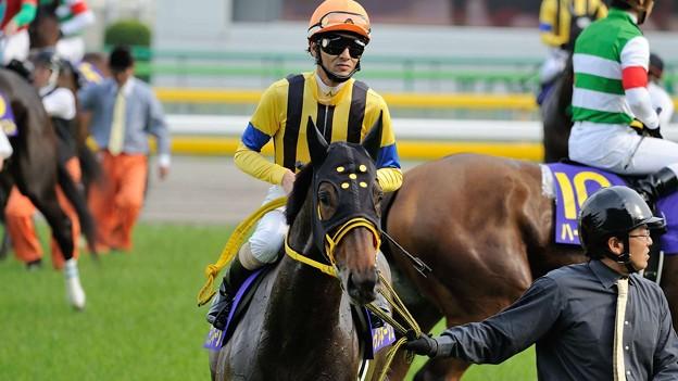 [140525東京11R優駿牝馬]ブランネージュ「撮ってくれてますか、ちゃんと」秋山「ブラたんホントいい子だなぁ、感謝しろよ?」