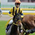 Photos: [140525東京11R優駿牝馬]ブランネージュ「撮ってくれてますか、ちゃんと」秋山「ブラたんホントいい子だなぁ、感謝しろよ?」