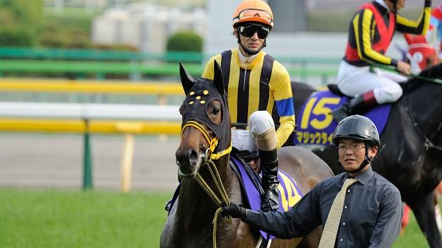 [140525東京11R優駿牝馬]ブランネージュ&秋山。「なに?いつの間にか入ってたから返し馬撮れなかった?よろしい、いくらでも撮らせてあげましょう」秋山「信じられへんなおい」