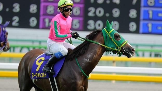 [140525東京11R優駿牝馬]ヌーヴォレコルト「私も笑ってたいくらいだわ…この微妙なプレッシャー…」