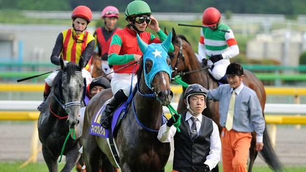 [140525東京11R優駿牝馬]マイネグレヴィル「さっきの汗が冷や汗になりそうですよここ」