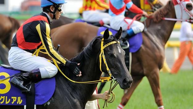 [140525東京11R優駿牝馬]サングレアル「ちょっと、輪のなかに入る気がしないです」