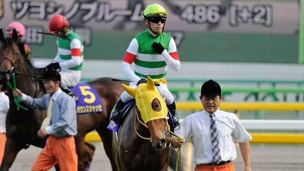 [140525東京11R優駿牝馬]ハープスター「みんなが私を狙ってる目をしているわ…怖いわぁ」バウンスシャッセ「狙うわよ!そら狙うに決まってるでしょうよ!!」