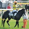 Photos: [140601東京10R東京優駿]イスラボニータ「じゃあ、こうやってゴール前でくいっとカメラの方向いたら有利になるかな?」蛯名「考えなくていいの」 #ジロリ馬