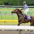 Photos: [140608東京11R安田記念]グランプリボス「コーセーくん、ゴールって遠いね」 #keiba #安田記念