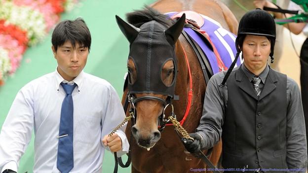 Photos: [140608東京11R安田記念]ワールドエース「ラーさん荒れてますな」
