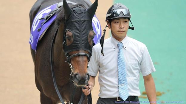 [140608東京11R安田記念]トーセンラー「フィエロも落ち着いたみたいだし、後は俺だね~っても馬場きつそうだね…」