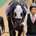 [140608東京11R安田記念]ショウナンマイティ「おやっさん、まさか矢作厩舎の人!?」おやっさん「!!」